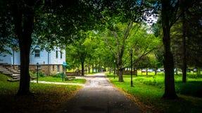 Θερινή ημέρα πορειών περπατήματος Στοκ Εικόνες