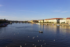 Θερινή ημέρα της Νίκαιας στην Πράγα με τον ποταμό Vltava στη ροή της πόλης Στοκ εικόνα με δικαίωμα ελεύθερης χρήσης