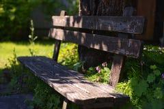 θερινή ημέρα φωτός του ήλιου κήπων πάγκων Στοκ Εικόνες