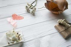 Θερινή θάλασσα που τίθεται με τα κοχύλια, πεταλούδες, λουλούδια Στοκ εικόνες με δικαίωμα ελεύθερης χρήσης