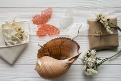 Θερινή θάλασσα που τίθεται με τα κοχύλια, πεταλούδες, λουλούδια Στοκ Εικόνες