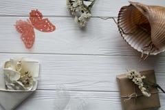 Θερινή θάλασσα που τίθεται με τα κοχύλια, τις πεταλούδες, τα λουλούδια και το διάστημα για το κείμενο Στοκ Εικόνες
