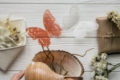 Θερινή θάλασσα που τίθεται με τα κοχύλια, τις πεταλούδες, τα λουλούδια και το διάστημα για το κείμενο Στοκ Εικόνα