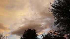 Θερινή θύελλα Στοκ Εικόνα
