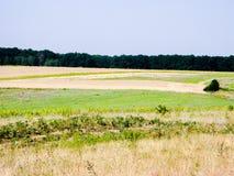 Θερινή λοφώδης έκταση στοκ φωτογραφία με δικαίωμα ελεύθερης χρήσης