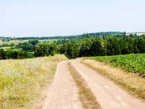 Θερινή λοφώδης έκταση στοκ εικόνες με δικαίωμα ελεύθερης χρήσης