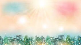 Θερινή περίοδο χρόνος στην παραλία με την ημέρα ηλιοφάνειας και τον πράσινο φοίνικα Στοκ Εικόνες