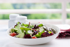 Θερινή περίοδο σαλάτα με τα φύλλα σαλάτας, τις ντομάτες, τα αγγούρια, τα ιταλικά χορτάρια και το τυρί σε ένα κύπελλο σε έναν πίνα Στοκ φωτογραφίες με δικαίωμα ελεύθερης χρήσης