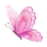 Θερινή πεταλούδα η διακοσμητική εικόνα απεικόνισης πετάγματος ραμφών το κομμάτι εγγράφου της καταπίνει το watercolor Στοκ Φωτογραφίες