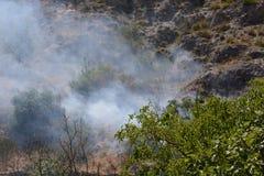 Θερινή πυρκαγιά, νότια Ιταλία Στοκ Φωτογραφίες