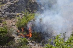 Θερινή πυρκαγιά, νότια Ιταλία Στοκ εικόνες με δικαίωμα ελεύθερης χρήσης