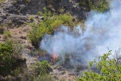 Θερινή πυρκαγιά, νότια Ιταλία Στοκ φωτογραφίες με δικαίωμα ελεύθερης χρήσης