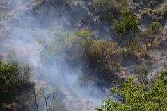 Θερινή πυρκαγιά, νότια Ιταλία Στοκ Εικόνες