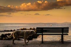 Θερινή πόλη στην Τουρκία με τον παράξενο καιρό Στοκ εικόνες με δικαίωμα ελεύθερης χρήσης