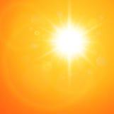 Θερινή φυσική ανασκόπηση Στοκ Εικόνες