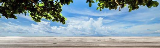 Θερινοί εγκαταστάσεις και ουρανός με τα σύννεφα Στοκ Φωτογραφία