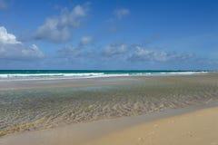 Θερινοί παραλία και ωκεανός Στοκ φωτογραφίες με δικαίωμα ελεύθερης χρήσης