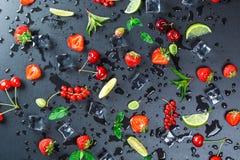 Θερινοί ` s πιό νωπές καρποί και σταφίδες μούρων, ριβήσια, κεράσια, ασβέστες, φράουλες και φρέσκια μέντα λ Στοκ Φωτογραφίες