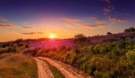 ΘΕΡΙΝΟ τοπίο μεγαλοπρεπές πολύχρωμο ηλιοβασίλεμα πέρα από το λιβάδι Στοκ εικόνες με δικαίωμα ελεύθερης χρήσης