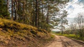 ΘΕΡΙΝΟ τοπίο Προαστιακός βρώμικος δρόμος κατά μήκος του δάσους στο φως βραδιού στοκ φωτογραφία με δικαίωμα ελεύθερης χρήσης