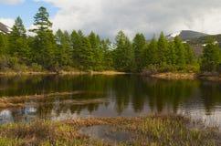ΘΕΡΙΝΟ τοπίο Στοκ Εικόνες