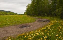 ΘΕΡΙΝΟ τοπίο Στοκ φωτογραφία με δικαίωμα ελεύθερης χρήσης