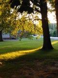 Θερινός ήλιος κάτω Στοκ φωτογραφία με δικαίωμα ελεύθερης χρήσης