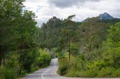 Θερινός δρόμος στα βουνά μέσω του δάσους Στοκ φωτογραφία με δικαίωμα ελεύθερης χρήσης
