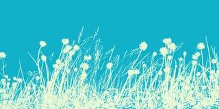 Θερινός τομέας, απεικόνιση των άγριων λουλουδιών, των χορταριών και των χλοών Τ ελεύθερη απεικόνιση δικαιώματος