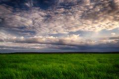 Θερινός τομέας και δραματικός ουρανός πριν από τη θύελλα Στοκ Φωτογραφίες