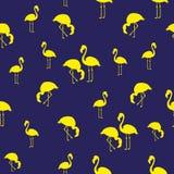 Θερινό άνευ ραφής σχέδιο φλαμίγκο πουλιών απεικόνισης τροπικό εξωτικό μπλε κίτρινος ελεύθερη απεικόνιση δικαιώματος
