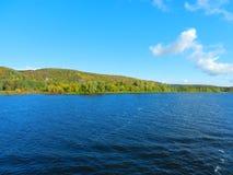 Θερινό δάσος στην όχθη ποταμού Στοκ Εικόνες