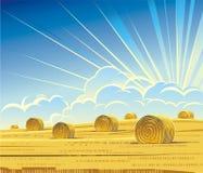 Θερινό αγροτικό τοπίο με το σανό ελεύθερη απεικόνιση δικαιώματος