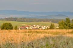Θερινό αγροτικό τοπίο Στοκ εικόνα με δικαίωμα ελεύθερης χρήσης
