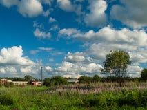 Θερινό αγροτικό τοπίο Στοκ Εικόνα