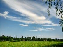 Θερινό απόγευμα στοκ εικόνα με δικαίωμα ελεύθερης χρήσης