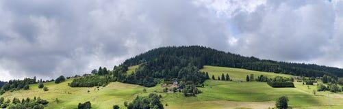 Θερινό αλπικό πανόραμα με το ηλιόλουστα δάσος και τα σπίτια λιβαδιών Στοκ Φωτογραφία