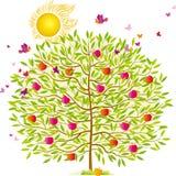 θερινό δέντρο ελεύθερη απεικόνιση δικαιώματος