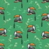 Θερινό εξωτικό τροπικό άνευ ραφής σχέδιο με τα toucans και τα καρπούζια Καθιερώνουσα τη μόδα απεικόνιση, υφαντική τυπωμένη ύλη, τ απεικόνιση αποθεμάτων