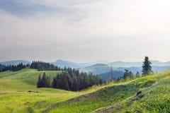 θερινό ηλιοβασίλεμα κορυφογραμμών βουνών Στοκ εικόνα με δικαίωμα ελεύθερης χρήσης