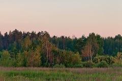 θερινό ηλιοβασίλεμα πε&delta Στοκ Φωτογραφία