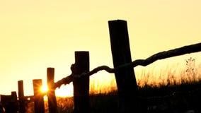 Θερινό ηλιοβασίλεμα απόθεμα βίντεο