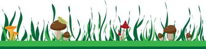 Θερινό πλαίσιο με τα μανιτάρια και τη χλόη, το φθινόπωρο ή το καλοκαίρι απεικόνιση αποθεμάτων