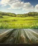 Θερινό ποιμενικό υπόβαθρο με τις ξύλινες σανίδες Στοκ Εικόνες