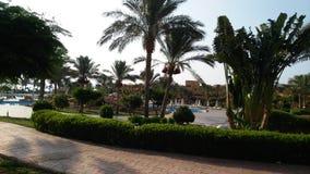 θερινό πρωί ήλιων διακοπές Αίγυπτος στοκ εικόνα
