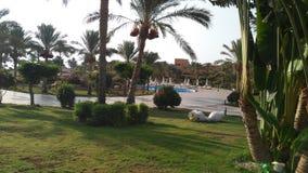 θερινό πρωί ήλιων διακοπές Αίγυπτος Στοκ Φωτογραφίες