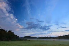 Θερινό πρωί στον τομέα επαρχίας Στοκ Εικόνες