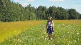 Θερινό τοπίο, κορίτσι, τομέας του λιναριού Στοκ φωτογραφία με δικαίωμα ελεύθερης χρήσης