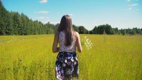 Θερινό τοπίο, κορίτσι, τομέας του λιναριού απόθεμα βίντεο