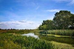 Θερινό τοπίο με έναν ποταμό Στοκ Φωτογραφίες